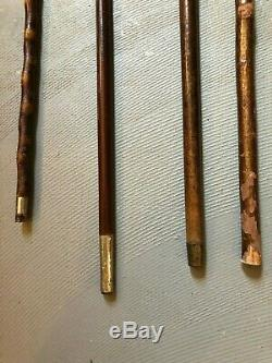 Set of Four Antique Bone and Sterling or Brass Walking Stick Canes Macasar Wood